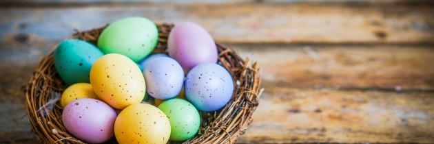 Rebirth, Renew Happy Easter!